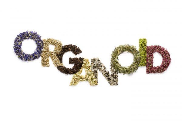 Organoid Technologies GmbH.